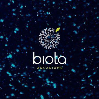 Portfolio_Feature_BIO