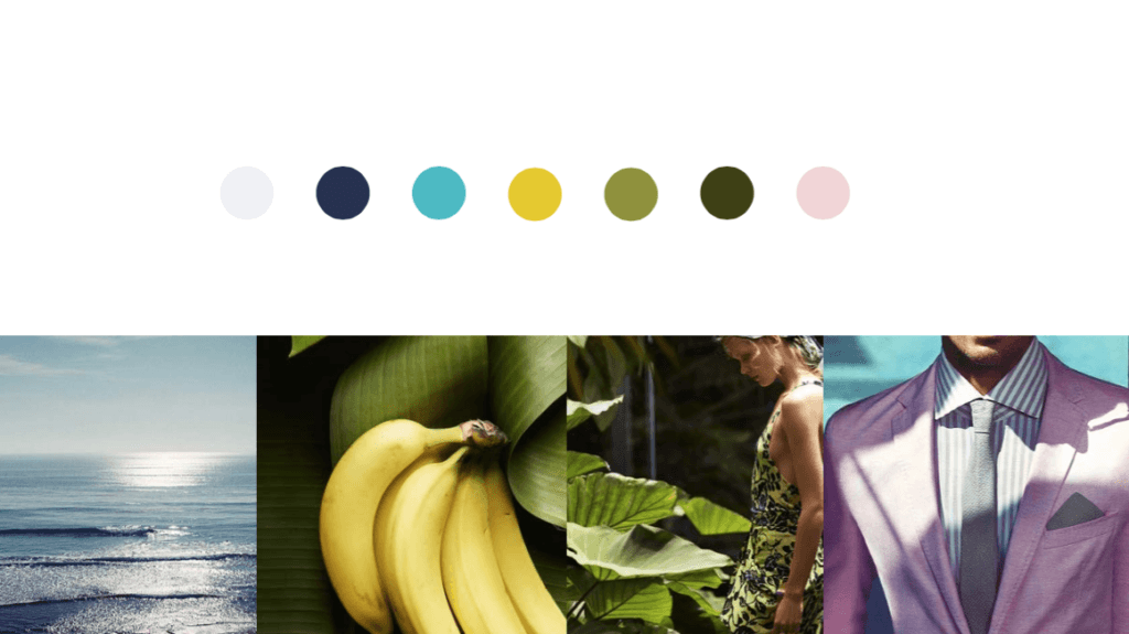 b_color_inspiration